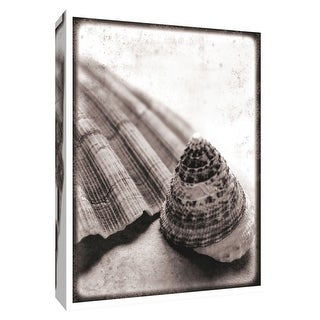 """PTM Images 9-154833  PTM Canvas Collection 10"""" x 8"""" - """"Gifts from the Sea"""" Giclee Shells Art Print on Canvas"""