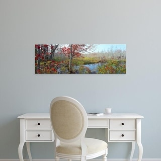 Easy Art Prints Panoramic Images's 'Trees in a forest, Damariscotta, Lincoln County, Maine, USA' Premium Canvas Art
