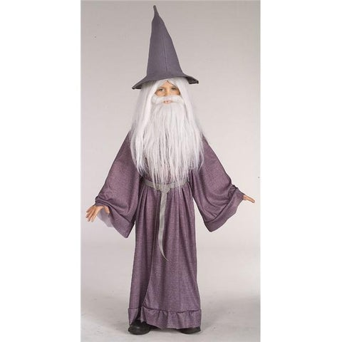 Costumes For All Occasions RU38781LG Gandalf Large 12 To 14