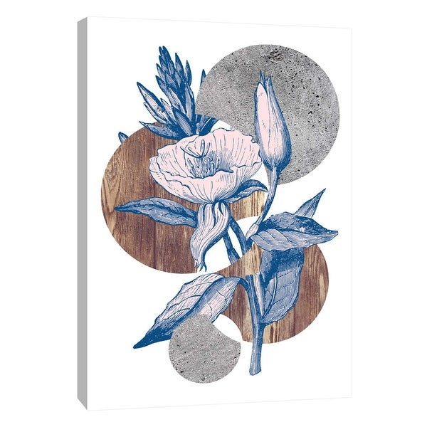 """PTM Images 9-105853 PTM Canvas Collection 10"""" x 8"""" - """"Botanical Studies 2"""" Giclee Flowers Art Print on Canvas"""
