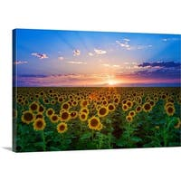 Premium Thick-Wrap Canvas entitled Sunset from sunflower field on eastern plains of Colorado, near Denver. - Multi-color