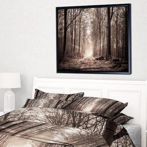 Designart 'Forest Trail in Sepia' Landscape Photography Framed Canvas Art Print