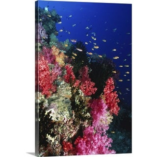 """""""Tropical coral reef"""" Canvas Wall Art"""