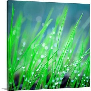 """""""Green grass"""" Canvas Wall Art"""