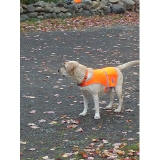 Petflect Reflective Dog Vest