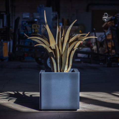 Octopus Agave Steel Planter Combo