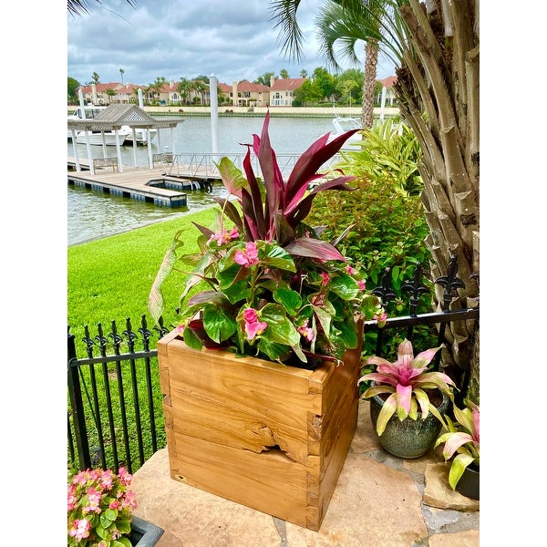 Large Teak Outdoor Planter Box. Opens flyout.