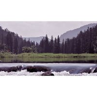 Forest Trees And Lake Canvas Print Wall Art