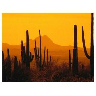 """""""Desert at sunset"""" Poster Print"""