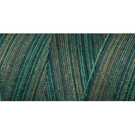 Everglades - Star Mercerized Cotton Thread Variegated 1;200yd