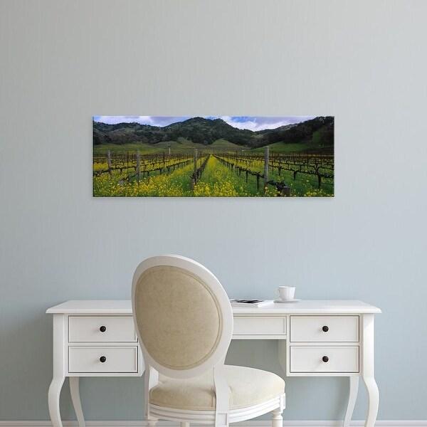 Easy Art Prints Panoramic Image 'Mustard plants growing in a vineyard, Napa Valley, California' Canvas Art