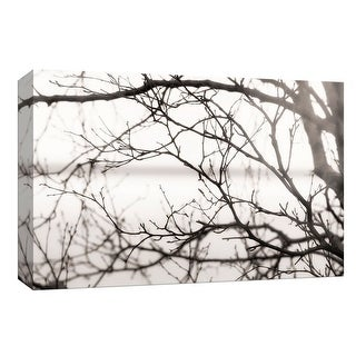 "PTM Images 9-148378  PTM Canvas Collection 8"" x 10"" - ""After the Rain"" Giclee Branches Art Print on Canvas"