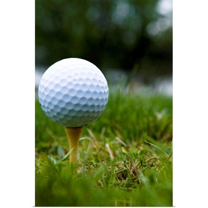 Shop Golf Ball On Tee Poster Print Overstock 21595249