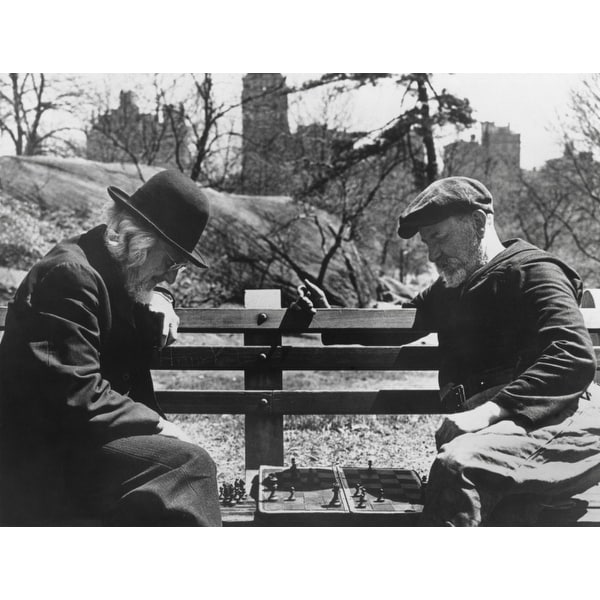 Shop Two Old Timers Playing Chess On A Central Park Bench In New