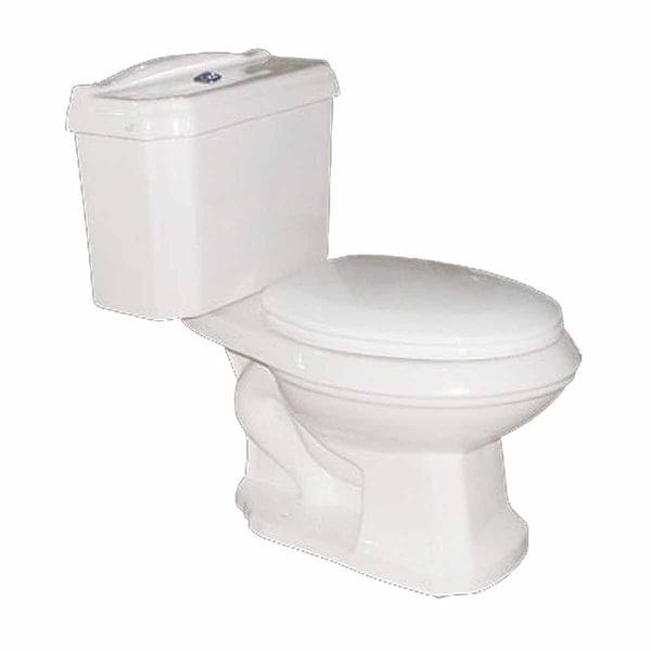 2 Piece Dual Flush Elongated Bathroom Toilet No-Slam Seat Included