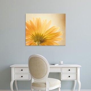Easy Art Prints Carolyn Cochrane's 'Butterscotch' Premium Canvas Art