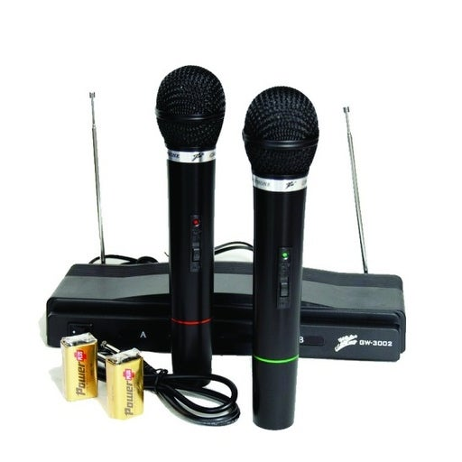 Dual Wireless Microphones