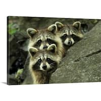Mircea Costina Premium Thick-Wrap Canvas entitled Tres Banditos - Multi-color