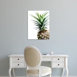Easy Art Prints Lexie Greer's 'Pineapple (color)' Premium Canvas Art