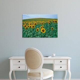 Easy Art Prints Gavriel Jecan's 'Sunflower Field' Premium Canvas Art