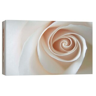 """PTM Images 9-103746  PTM Canvas Collection 8"""" x 10"""" - """"White Rose Swirl"""" Giclee Roses Art Print on Canvas"""