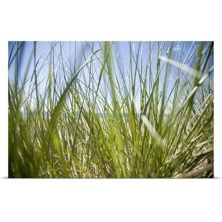 """Ocean seen through sea grass, Montauk, Hamptons, Long Island, New York"" Poster Print"
