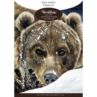 Creative World Of Crafts Die-Cut Decoupage Sheets A4 20/Pkg-Snow & Ice, Vol 2