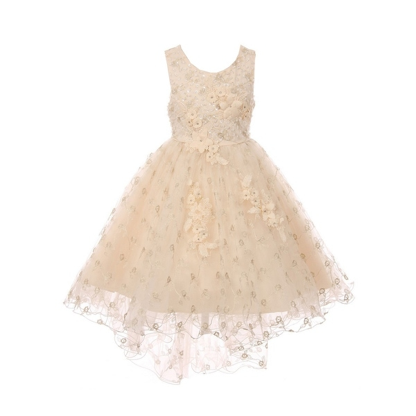 Shop Little Girls Champagne Rhinestone Sequin Embroidered