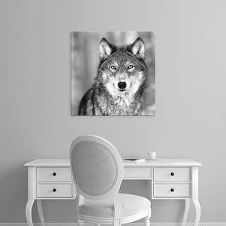 Easy Art Prints PhotoINC Studio's 'Wolf' Premium Canvas Art