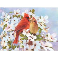 Royal Brush  Cardinals Color Pencil by Number Kit - 8.75 x 11.75 in.