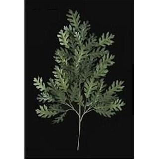 Autograph Foliages PR-414 - 37 Inch Fire  ant Rounded Oak Branch - Green - Dozen