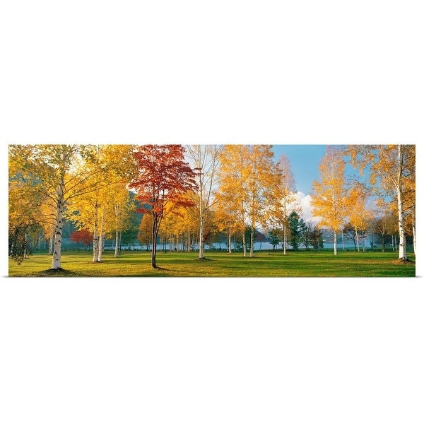 """""""Trees in autumn"""" Poster Print"""