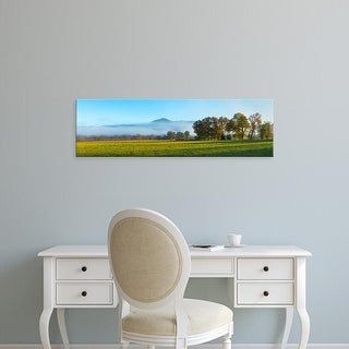 Easy Art Prints Panoramic Image 'Fog, Cades Cove, Great Smoky Mountains National Park, Tennessee' Canvas Art