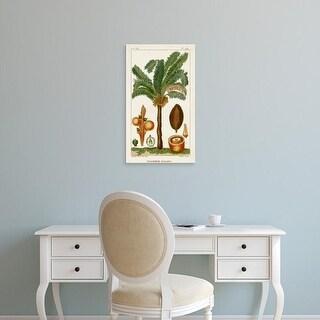 Easy Art Prints Turpin's 'Turpin Exotic Palms VII' Premium Canvas Art