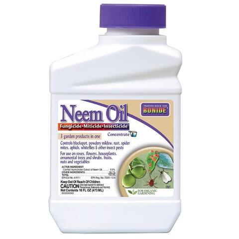 Bonide 024 Concentrate Neem Oil, 16 Oz