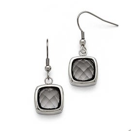 Chisel Stainless Steel Polished Square Glass Shepherd Hook Earrings