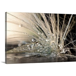 Maryam Zahirimehr Premium Thick-Wrap Canvas entitled Pearls