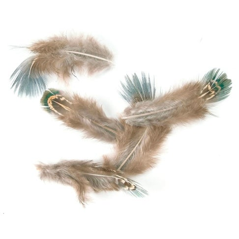 Pheasant Feathers 4G-Natural
