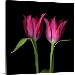"""Tulip flowers"" Canvas Wall Art"