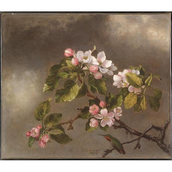 Easy Art Prints Martin Johnson Heade's 'Hummingbird and Apple Blossoms' Premium Canvas Art