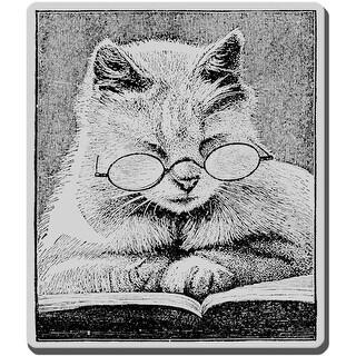 "Stampendous Cling Stamp 3.5""X4"" -Cattus Librum"