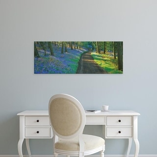 Easy Art Prints Panoramic Image 'Bluebell flowers along a dirt road in a forest, Gloucestershire, England' Canvas Art