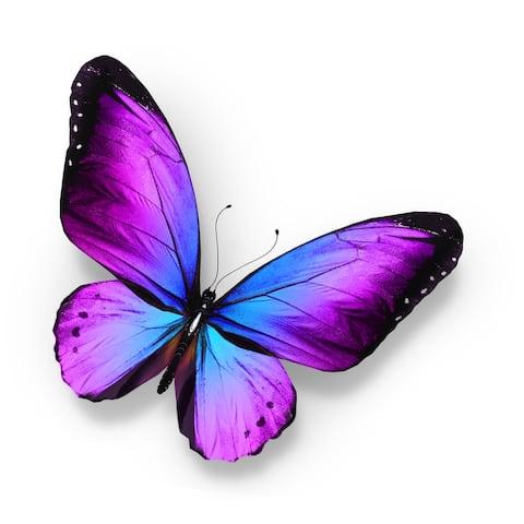 Designart 'Violet and Blue Butterfly' Modern Framed Canvas Wall Art Print