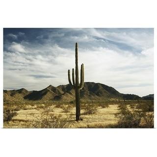 """Saguaro cactus"" Poster Print"