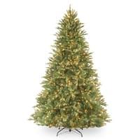 7.5' Pre-Lit Tiffany Fir Artificial Christmas Tree – Clear lights - green
