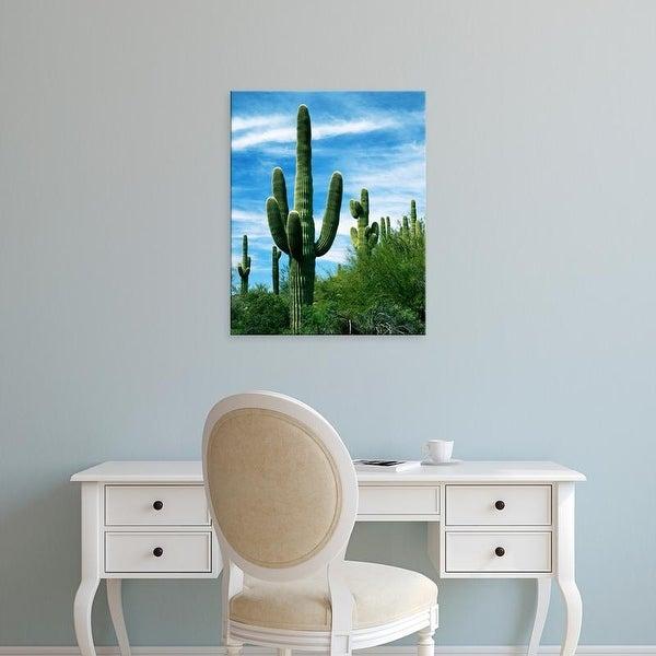 Easy Art Prints Charles Gurche's 'Saguaro Cacti' Premium Canvas Art