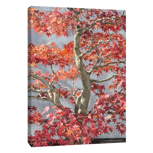 """PTM Images 9-105981 PTM Canvas Collection 10"""" x 8"""" - """"Red Bonsai Tree National Arboretum"""" Giclee Trees Art Print on Canvas"""