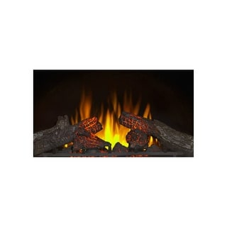 "Napoleon NEFI24H  5000 BTU 1500 Watt 24"" Wide Built-In Vent Free Electric Fireplace Insert with Electronic Ignition and Remote"