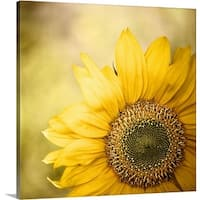 Premium Thick-Wrap Canvas entitled Sunflower blossom with bokeh background. - Multi-color