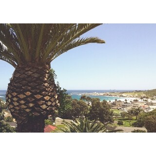 Beach, Ocean & Palm Tree Photograph Art Print